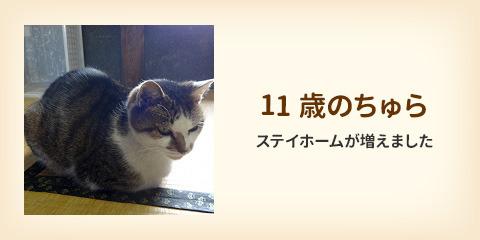 201208_2.jpg